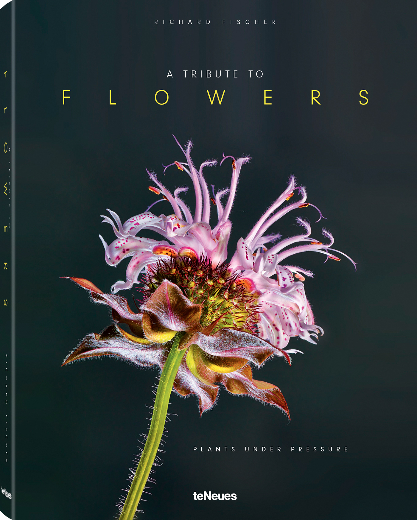 A TRIBUTE TO FLOWERS / PLANTS UNDER PRESSURE