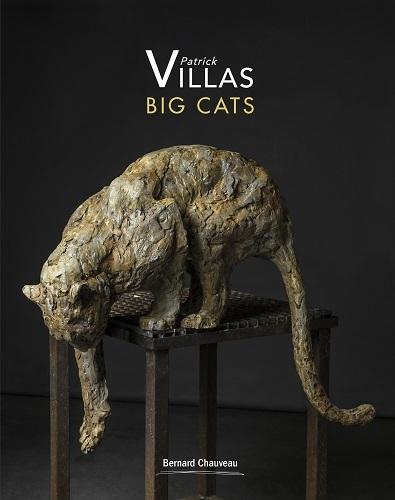 BIG CATS PATRICK VILLAS