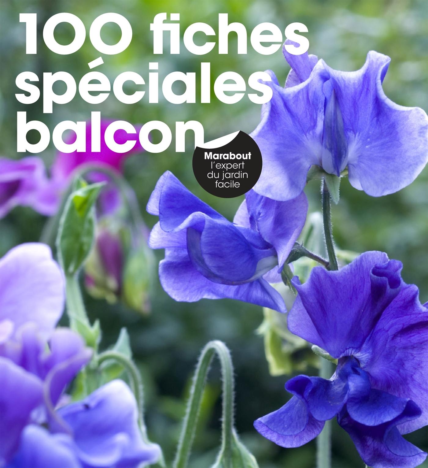 100 FICHES SPECIALES BALCON