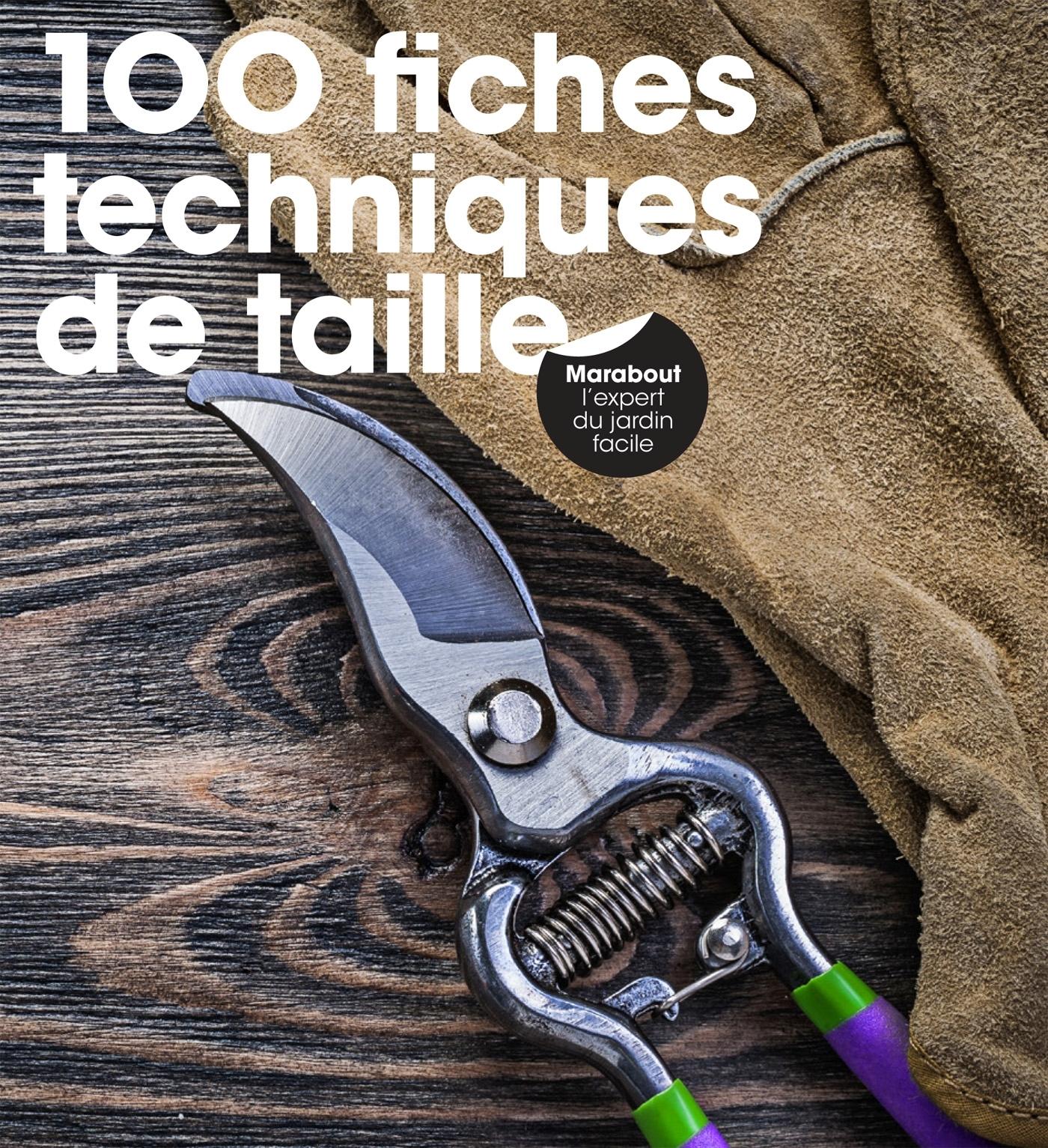 100 FICHES TECHNIQUES DE TAILLE