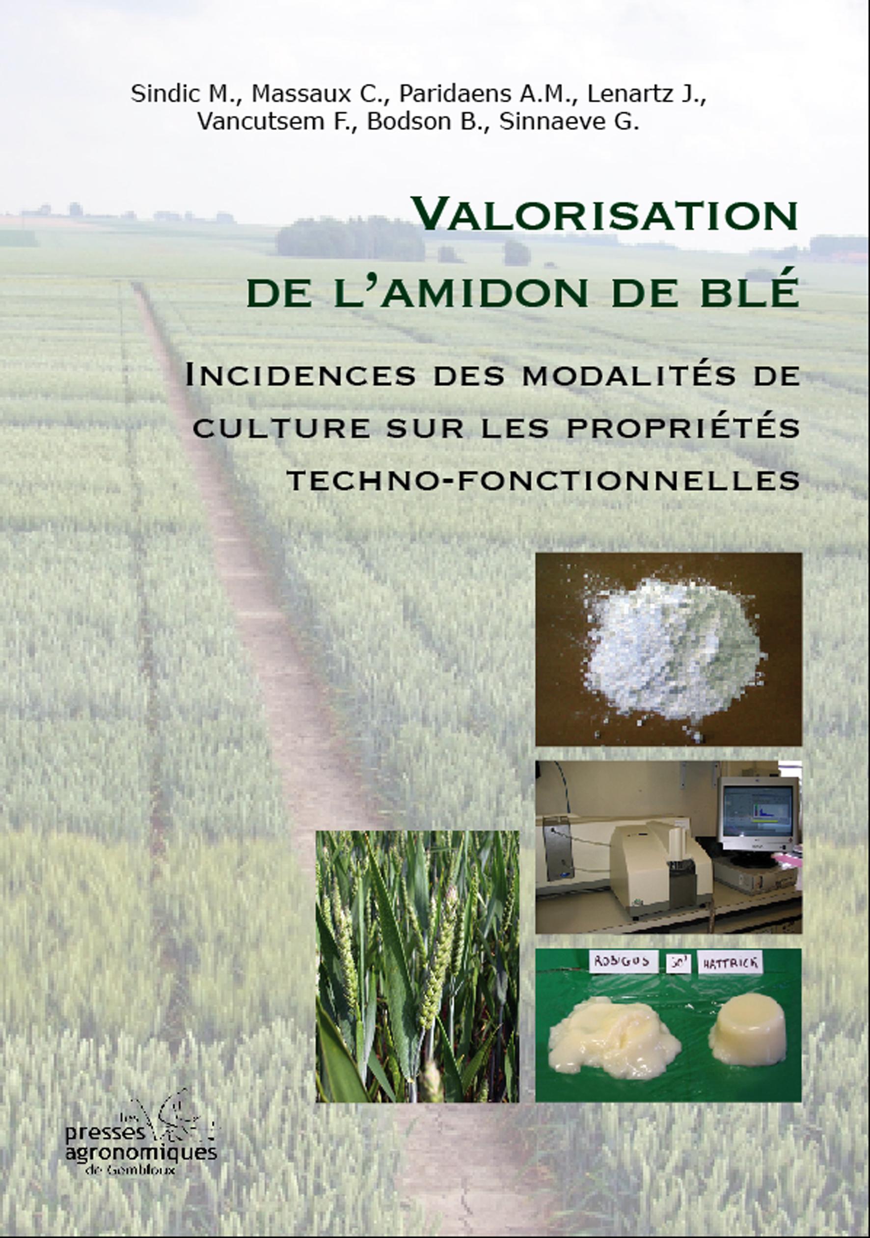 VALORISATION DE L'AMIDON DE BLE