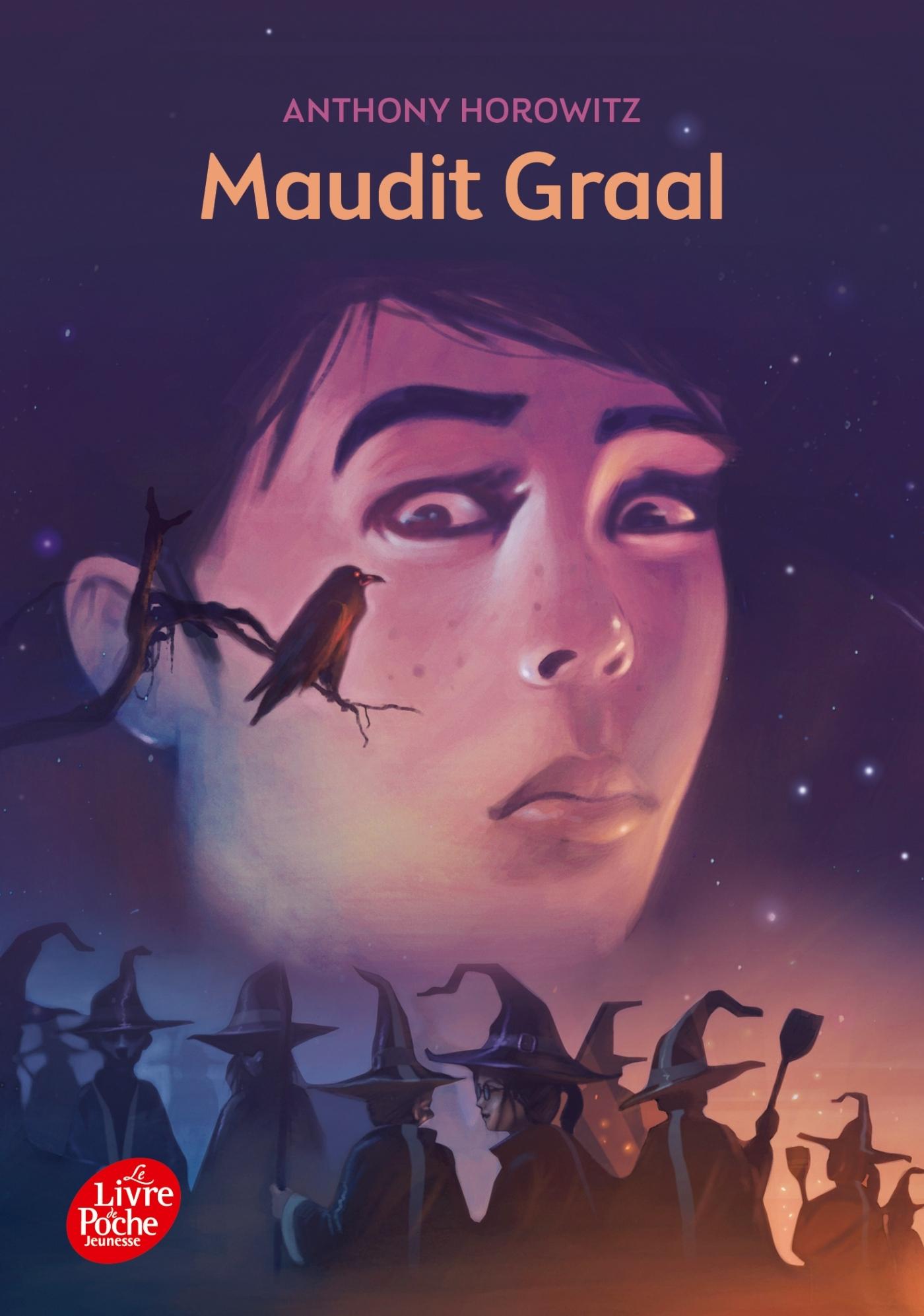 DAVID ELIOT - TOME 2 - MAUDIT GRAAL