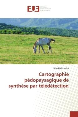 CARTOGRAPHIE PEDOPAYSAGIQUE DE SYNTHESE PAR TELEDETECTION