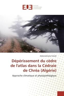 DEPERISSEMENT DU CEDRE DE L'ATLAS DANS LA CEDRAIE DE CHREA (ALGERIE)