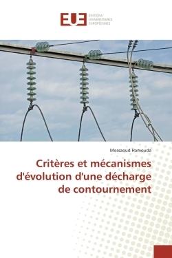 CRITERES ET MECANISMES D'EVOLUTION D'UNE DECHARGE DE CONTOURNEMENT