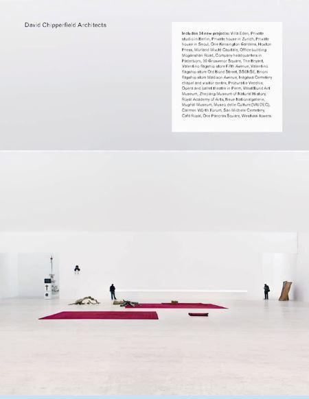 DAVID CHIPPERFIELD ARCHITECTS (NEW ED) /ANGLAIS