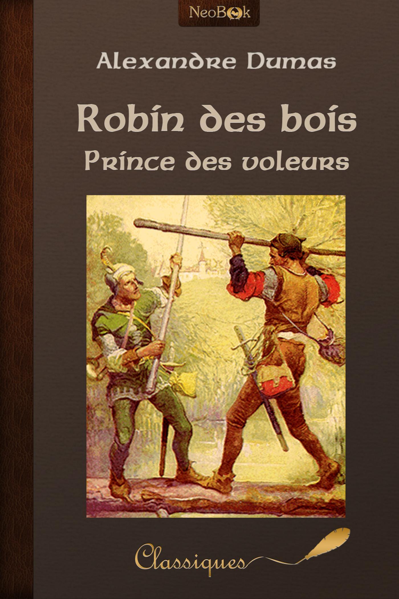 Robin des bois prince des voleurs
