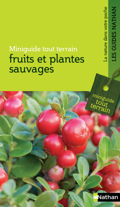 FRUITS ET PLANTES SAUVAGES - MINIGUIDE TOUT TERRAIN