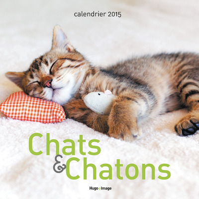 CALENDRIER MURAL CHATS & CHATONS 2015