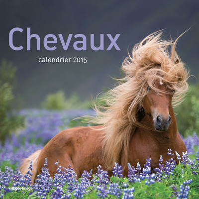 CALENDRIER 2015 CHEVAUX