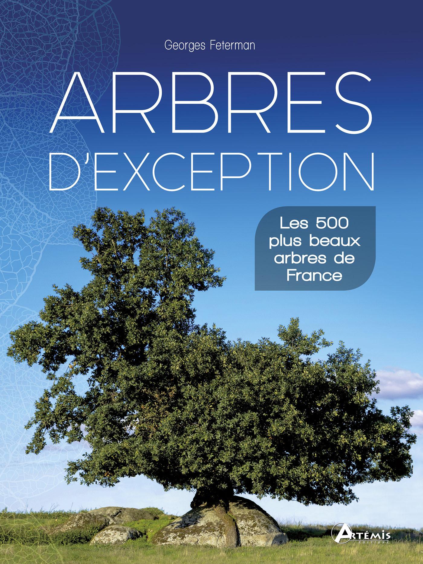 ARBRES D EXCEPTION 500 PLUS BEAUX ARBRES DE FRANCE
