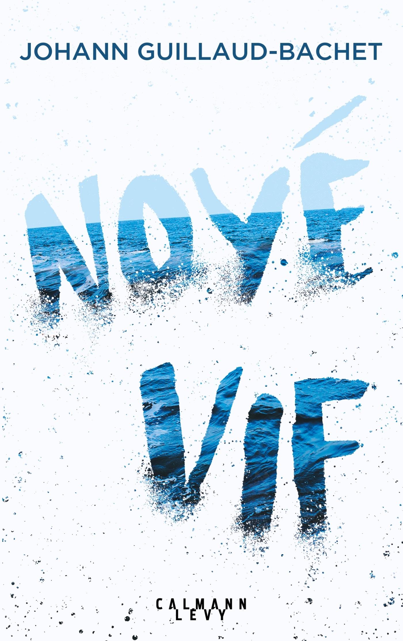 NOYE VIF