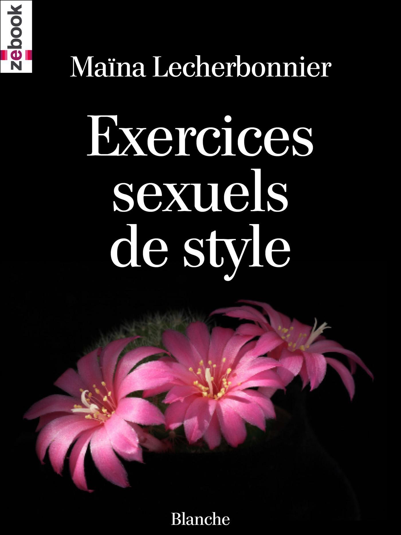 Exercices sexuels de style