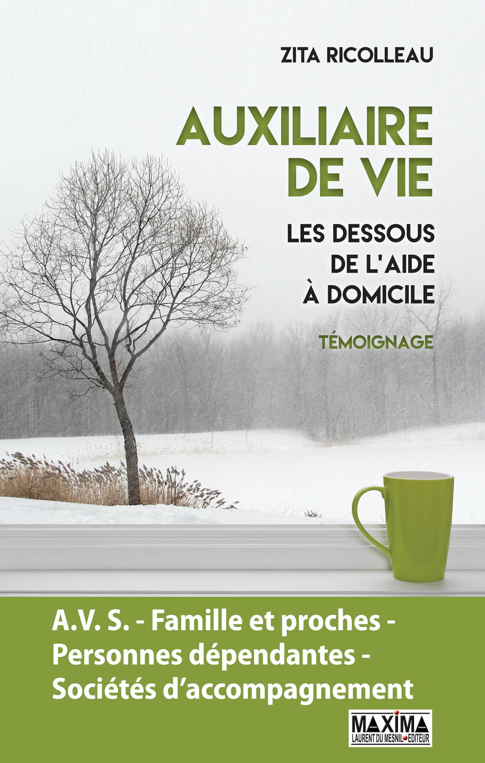 Auxiliaire de vie, LES DESSOUS DE L'AIDE À DOMICILE