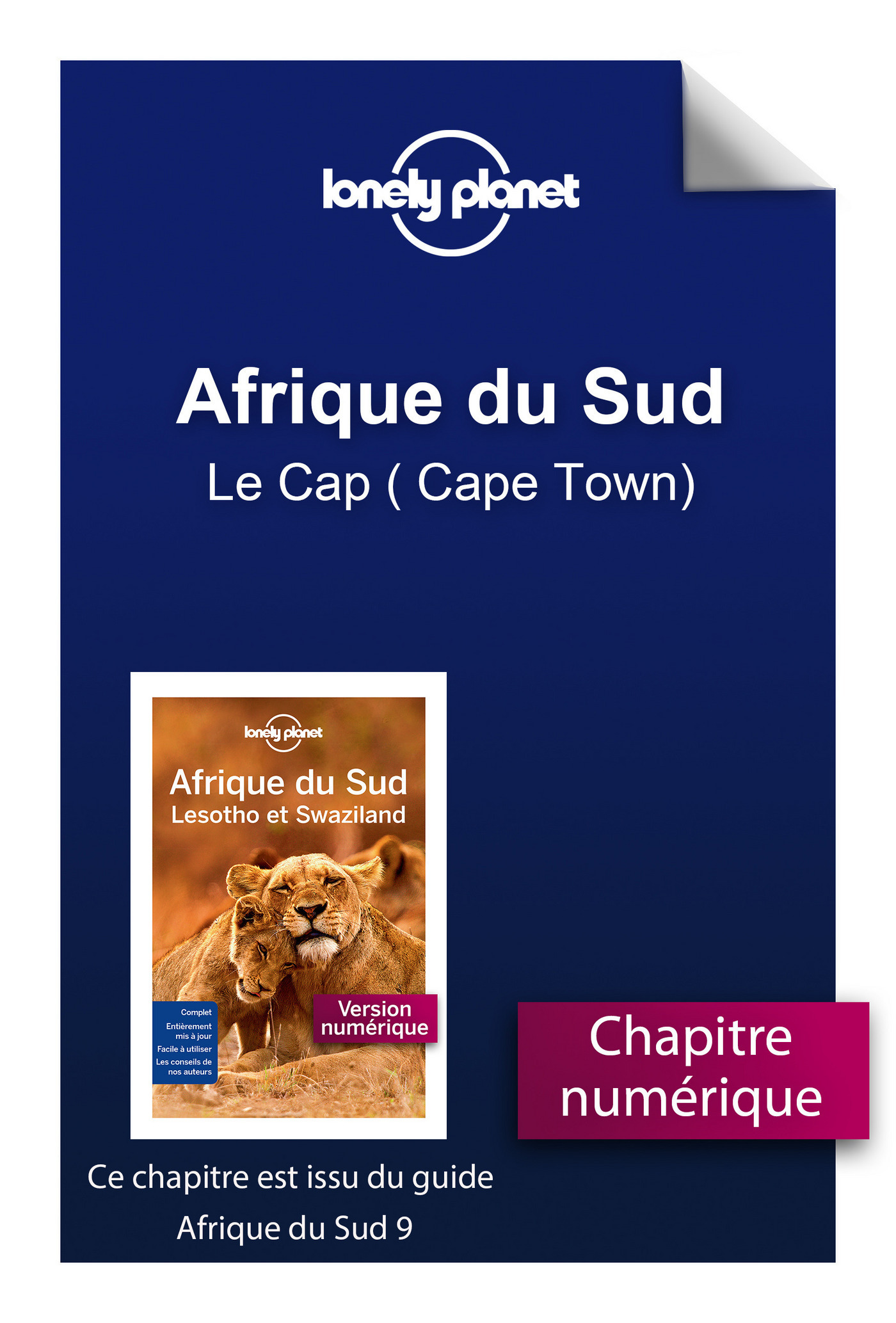 Afrique du Sud - Le Cap ( Cape Town)