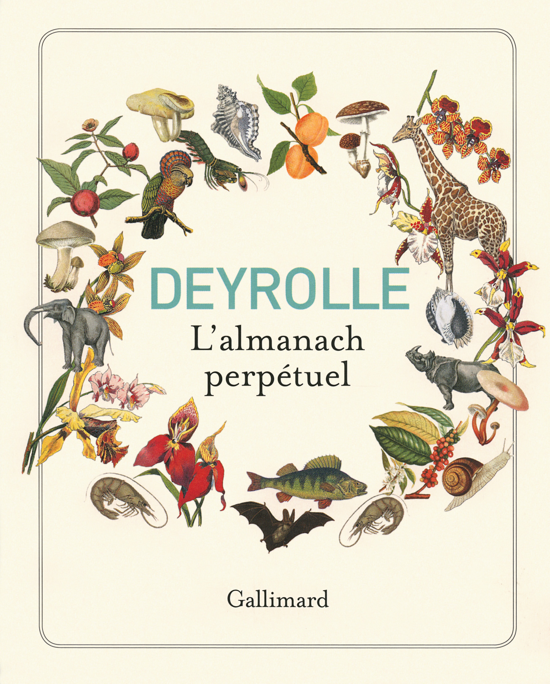 DEYROLLE, L'ALMANACH PERPETUEL
