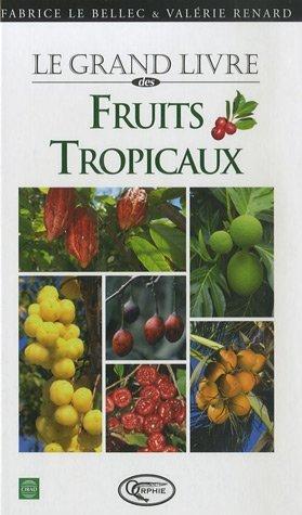 DES FRUITS TROPICAUX - NOUVELLE EDITION