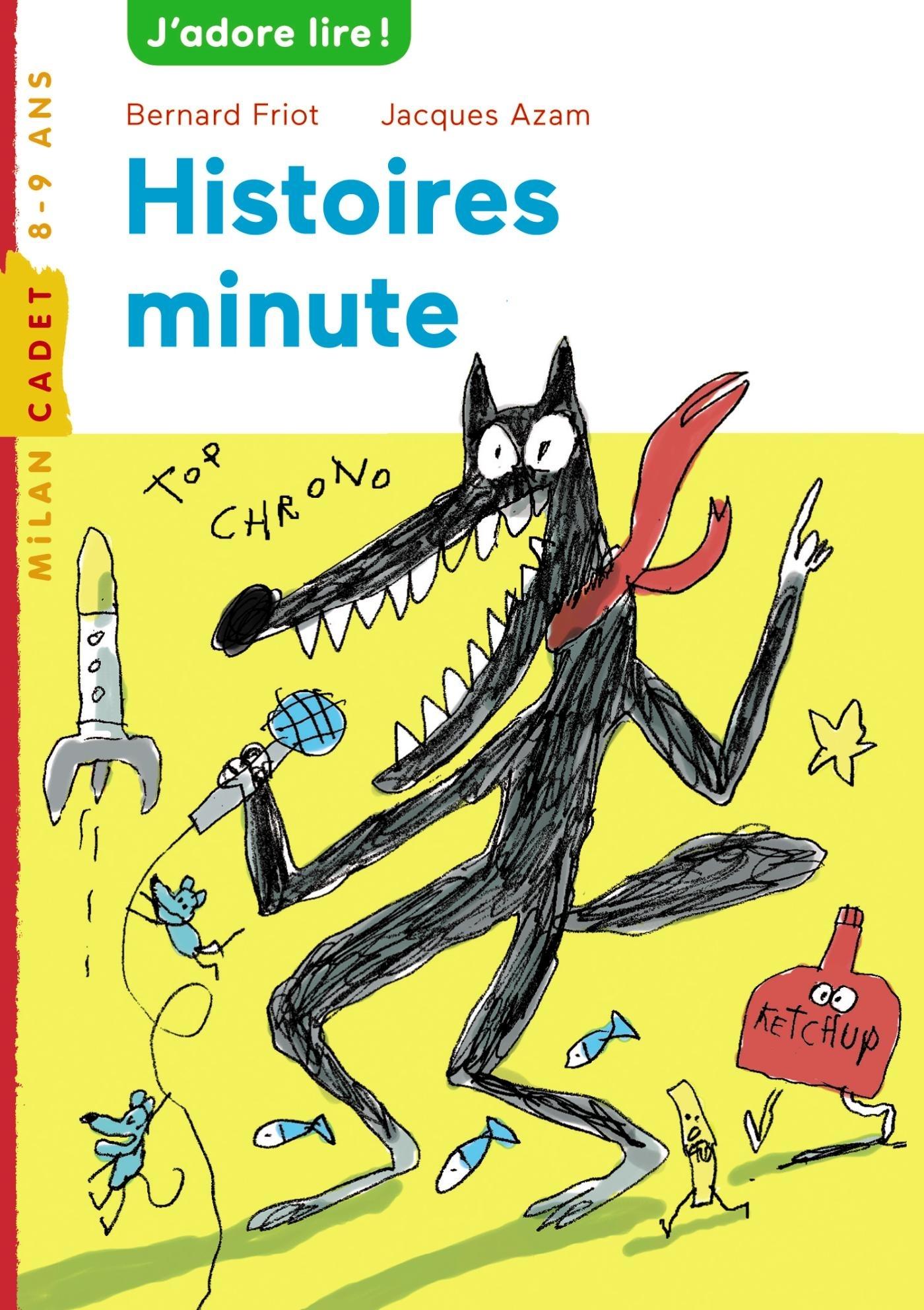 HISTOIRES MINUTES NE