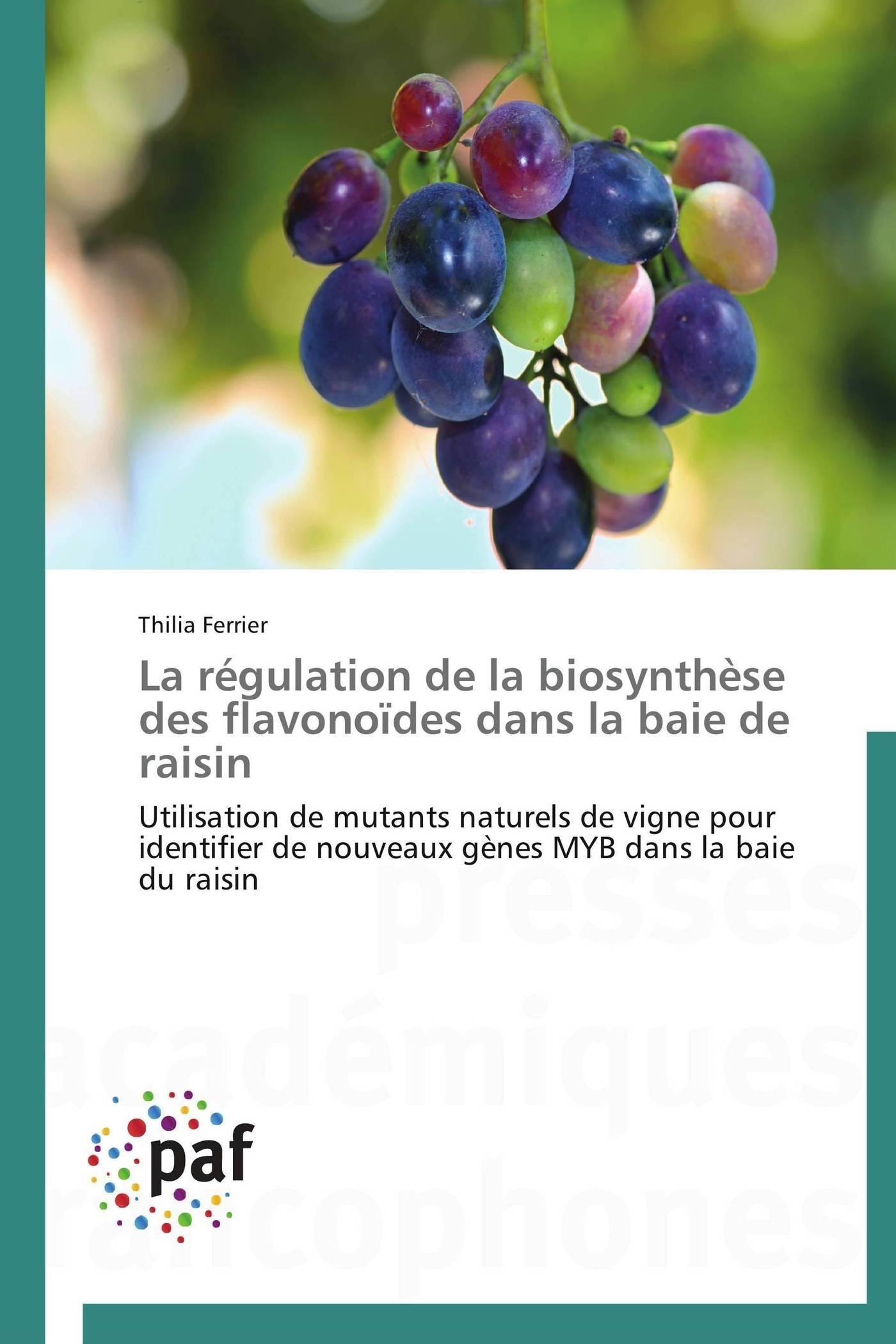 LA REGULATION DE LA BIOSYNTHESE DES FLAVONOIDES DANS LA BAIE DE RAISIN