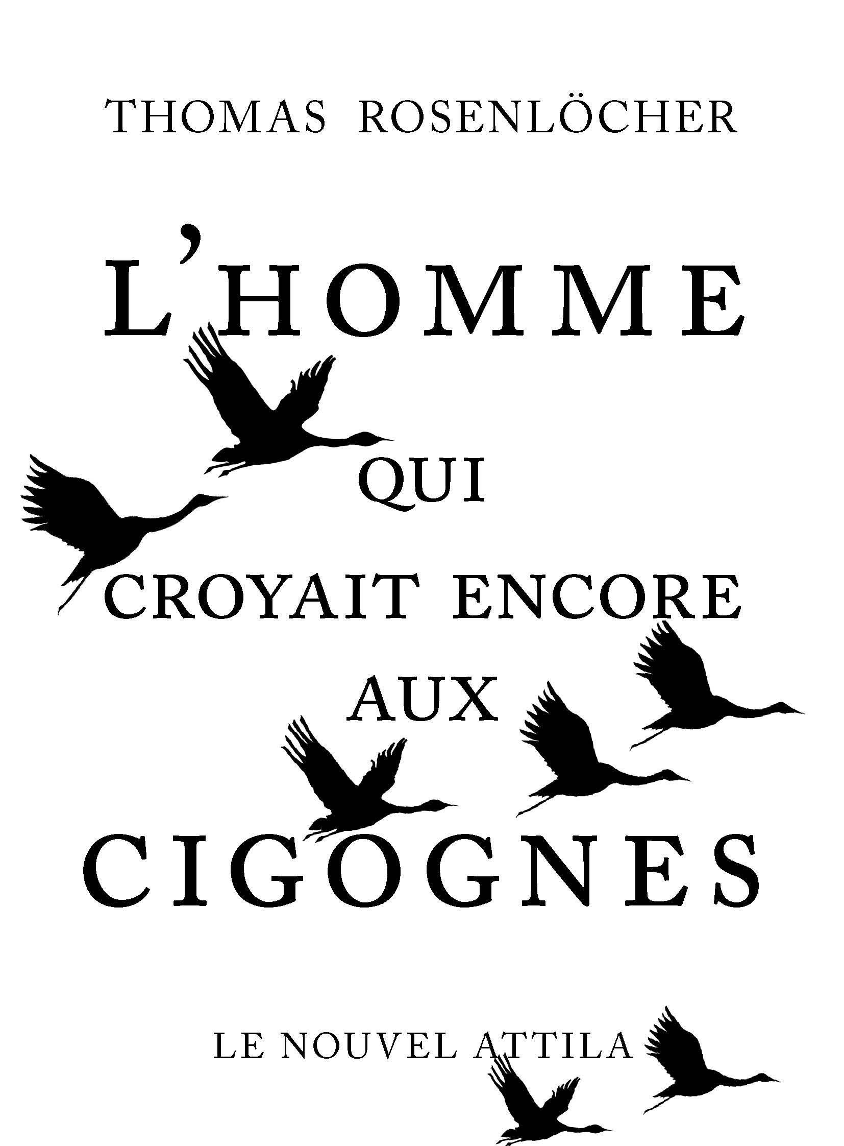 L'HOMME QUI CROYAIT ENCORE AUX CIGOGNES