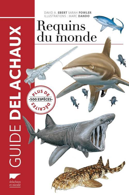 REQUINS DU MONDE. PLUS DE 500 ESPECES DECRITES