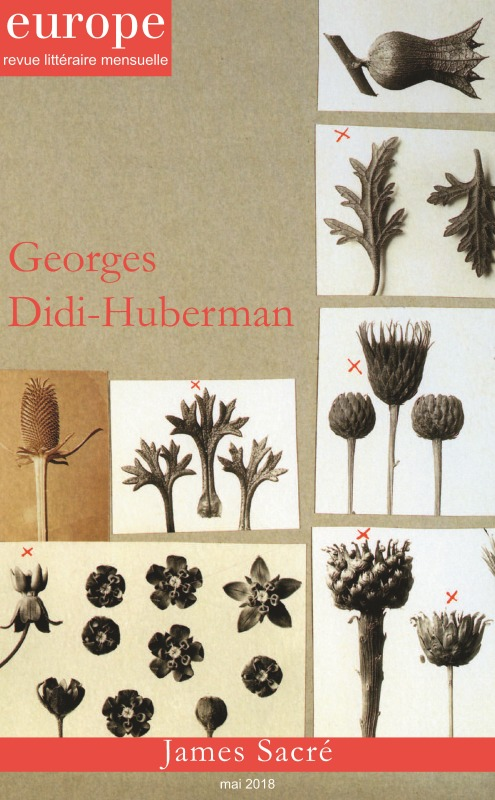 GEORGES DIDI HUBERMAN N 1069 MAI 2018