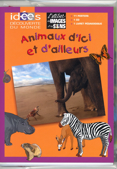 ATELIER IMAGES LES ANIMAUX ICI