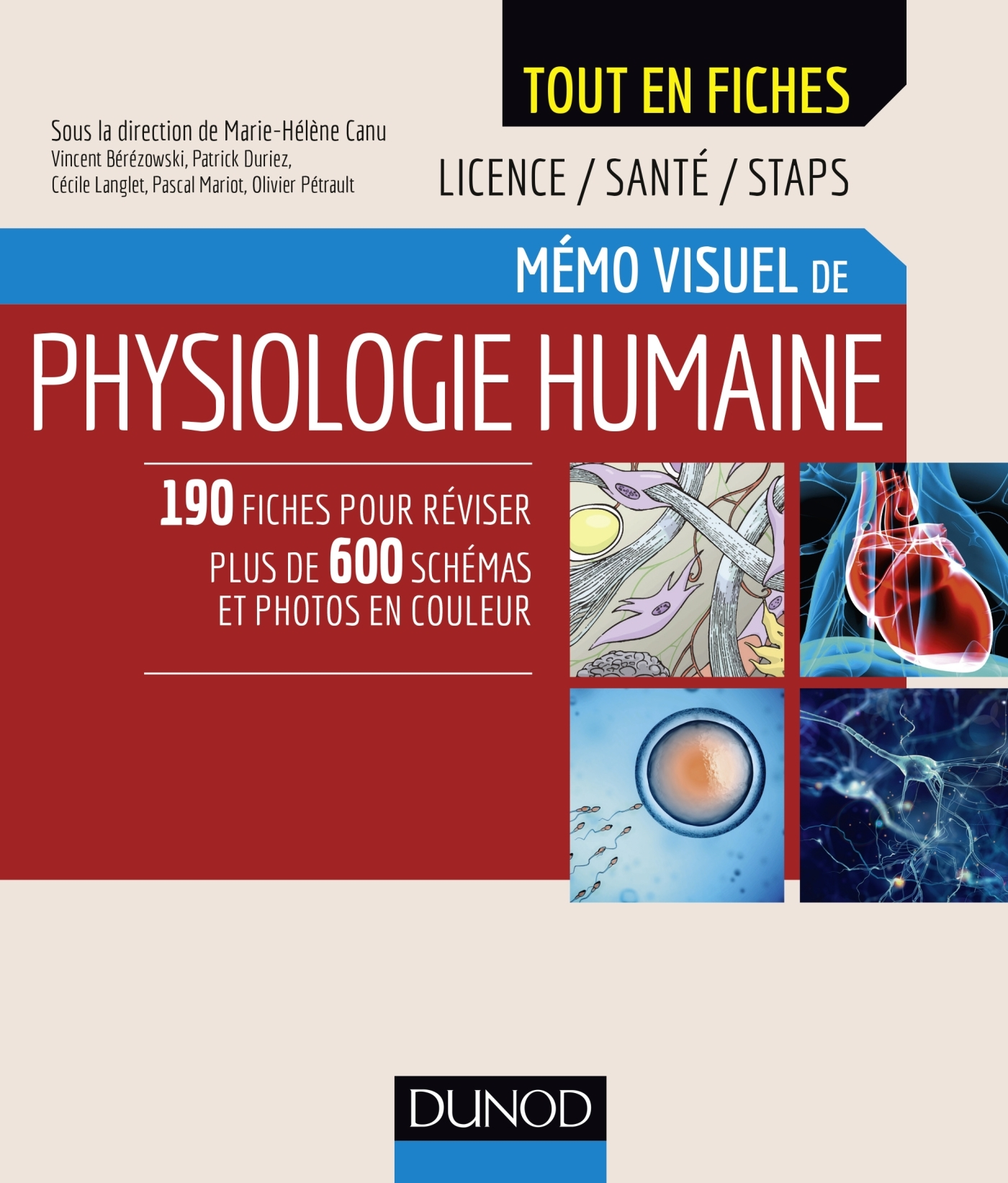 MEMO VISUEL DE PHYSIOLOGIE HUMAINE
