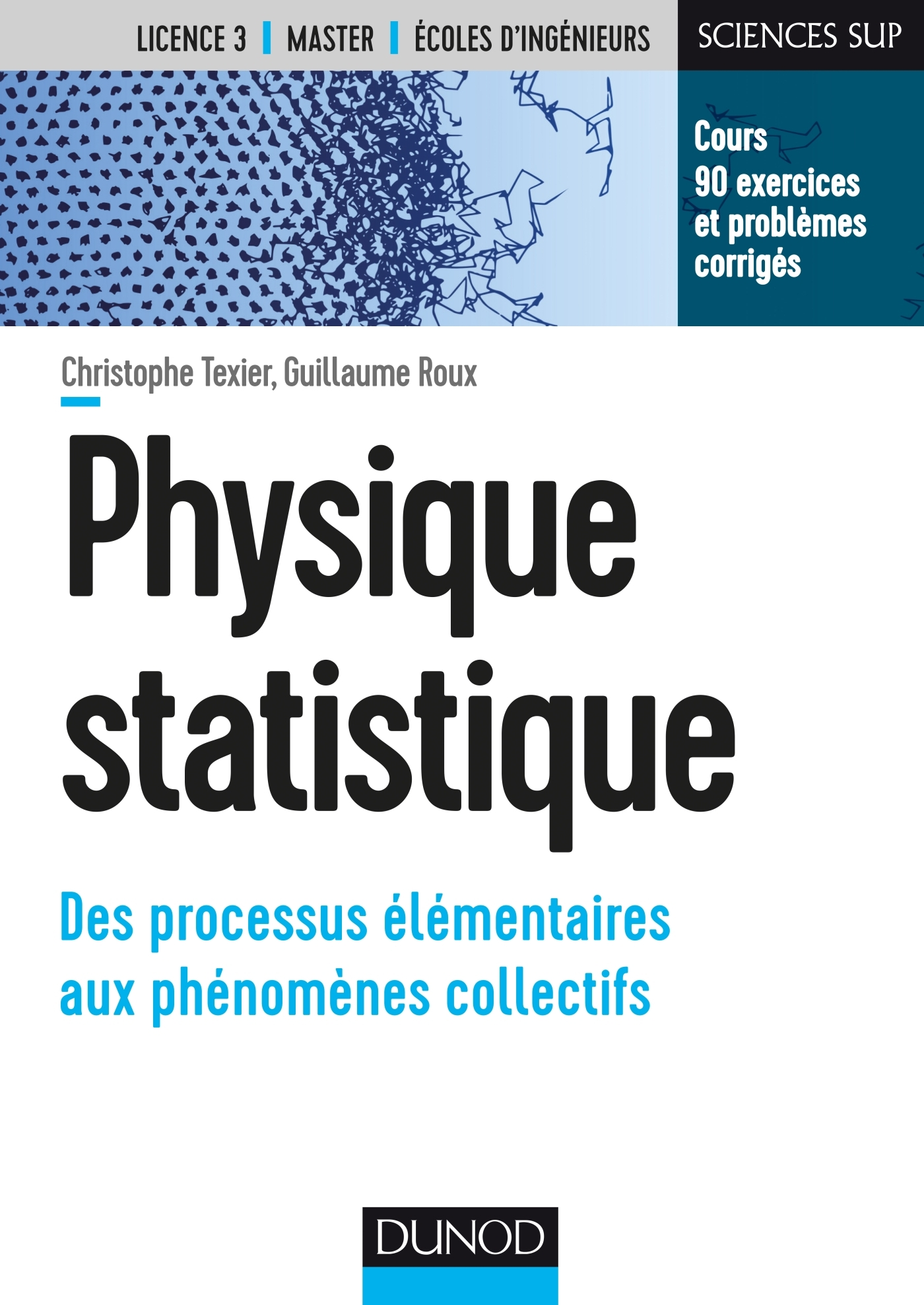 PHYSIQUE STATISTIQUE - DES PROCESSUS ELEMENTAIRES AUX PHENOMENES COLLECTIFS