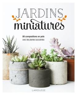 JARDINS MINIATURES AVEC DES PLANTES SUCCULENTES