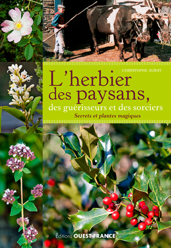 L'HERBIER DES PAYSANS, DES GUERISSEURS ET DES SORCIERS