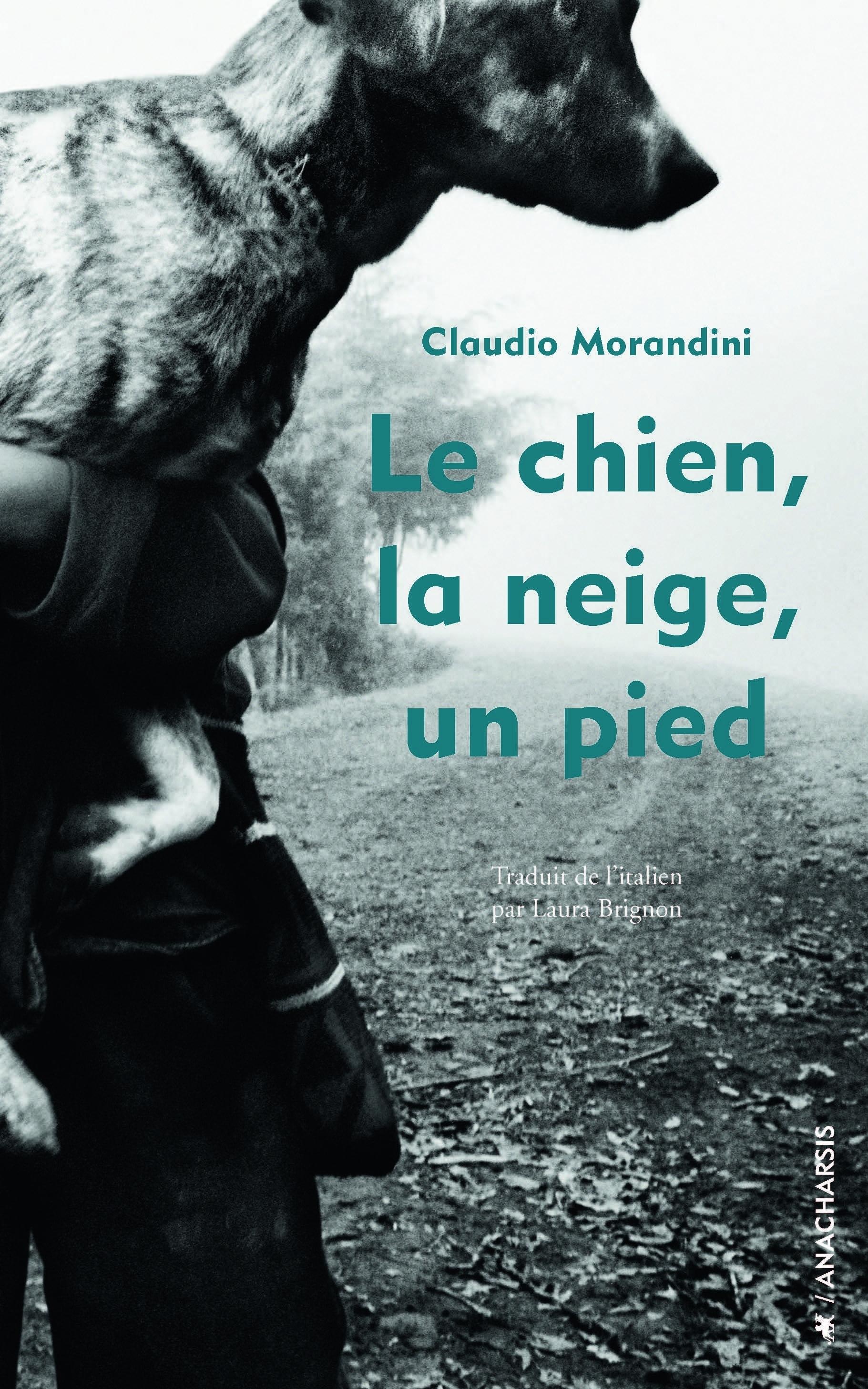 CHIEN, LA NEIGE, UN PIED (LE)