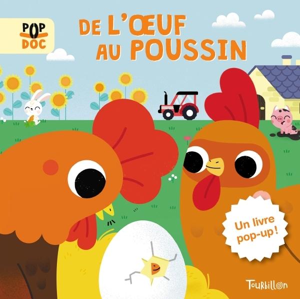 DE L'OEUF AU POUSSIN - POP UP