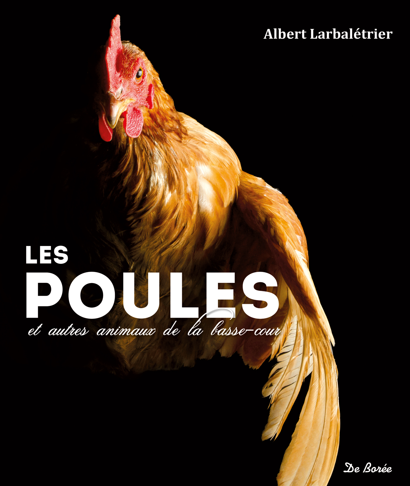 POULES ET AUTRES ANIMAUX DE LA BASSE-COUR (LES)
