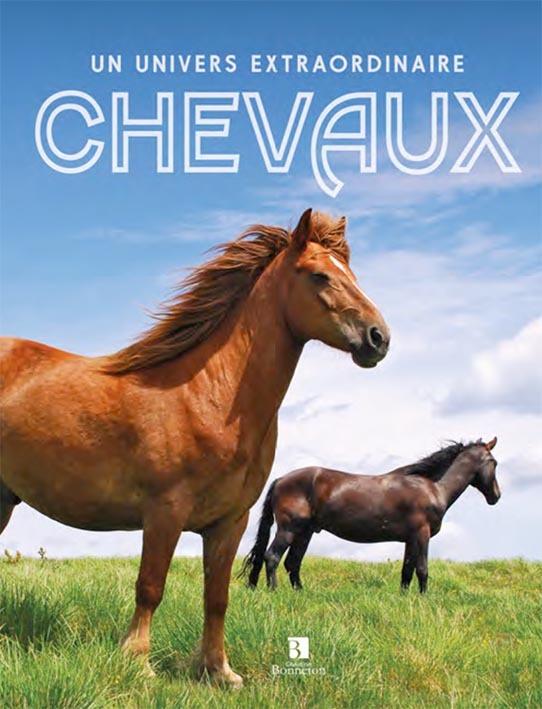 CHEVAUX. UN UNIVERS EXTRAORDINAIRE