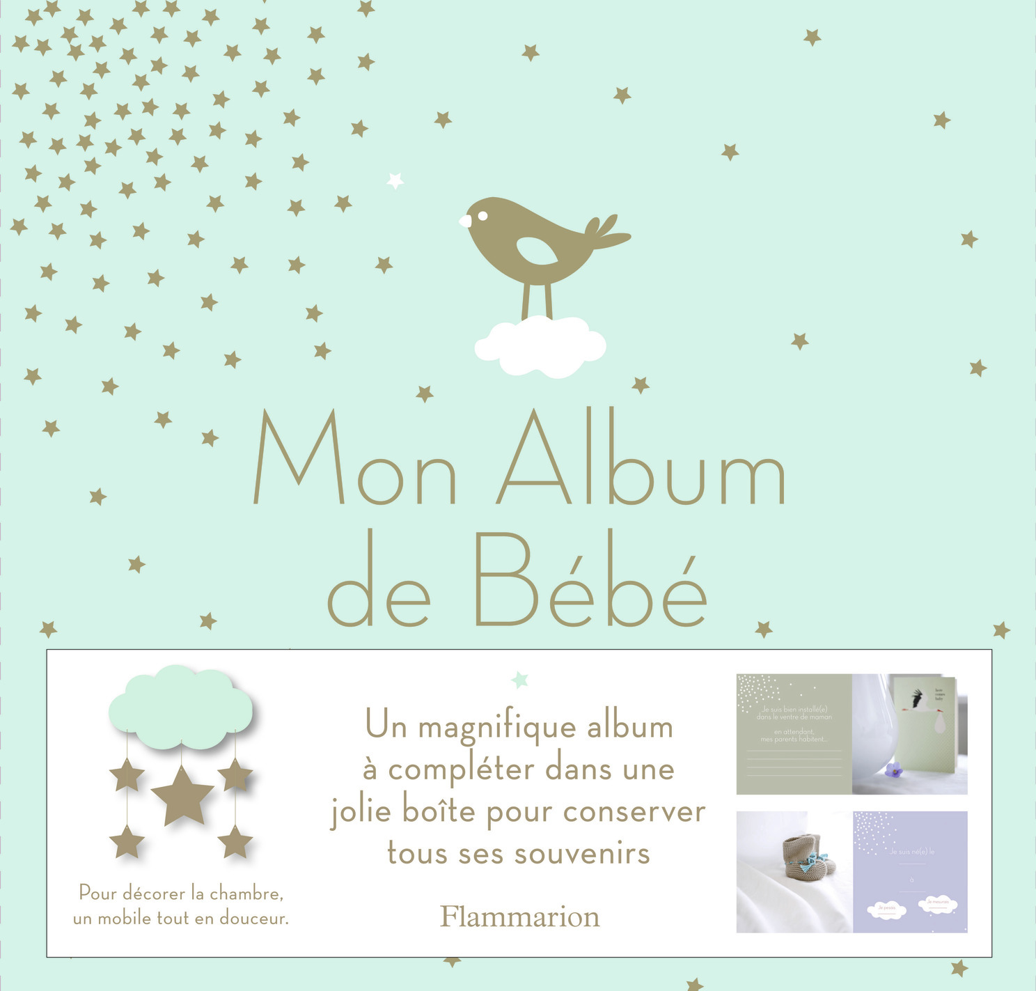 ALBUM DE BEBE (COFFRET)