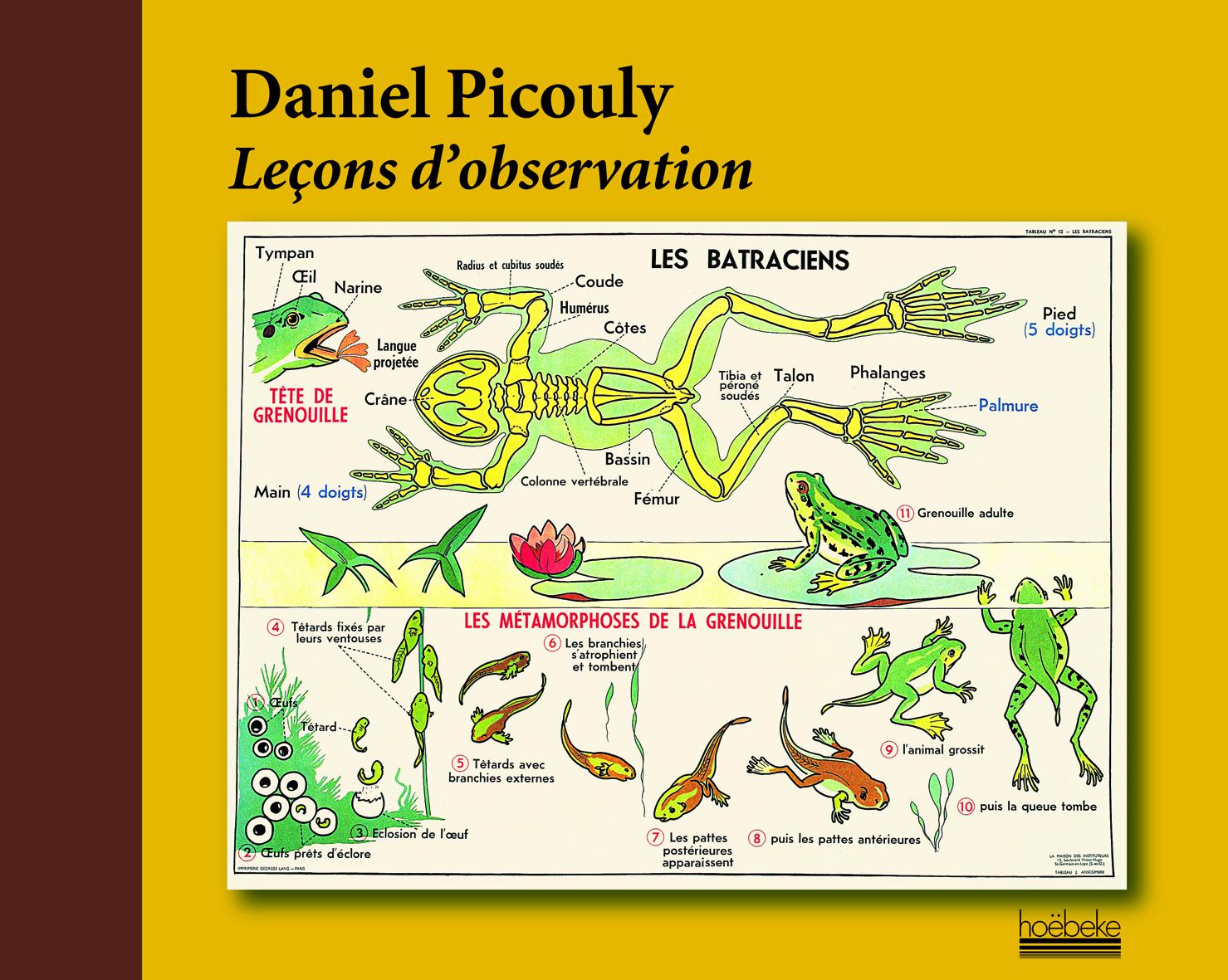 LECONS D'OBSERVATION