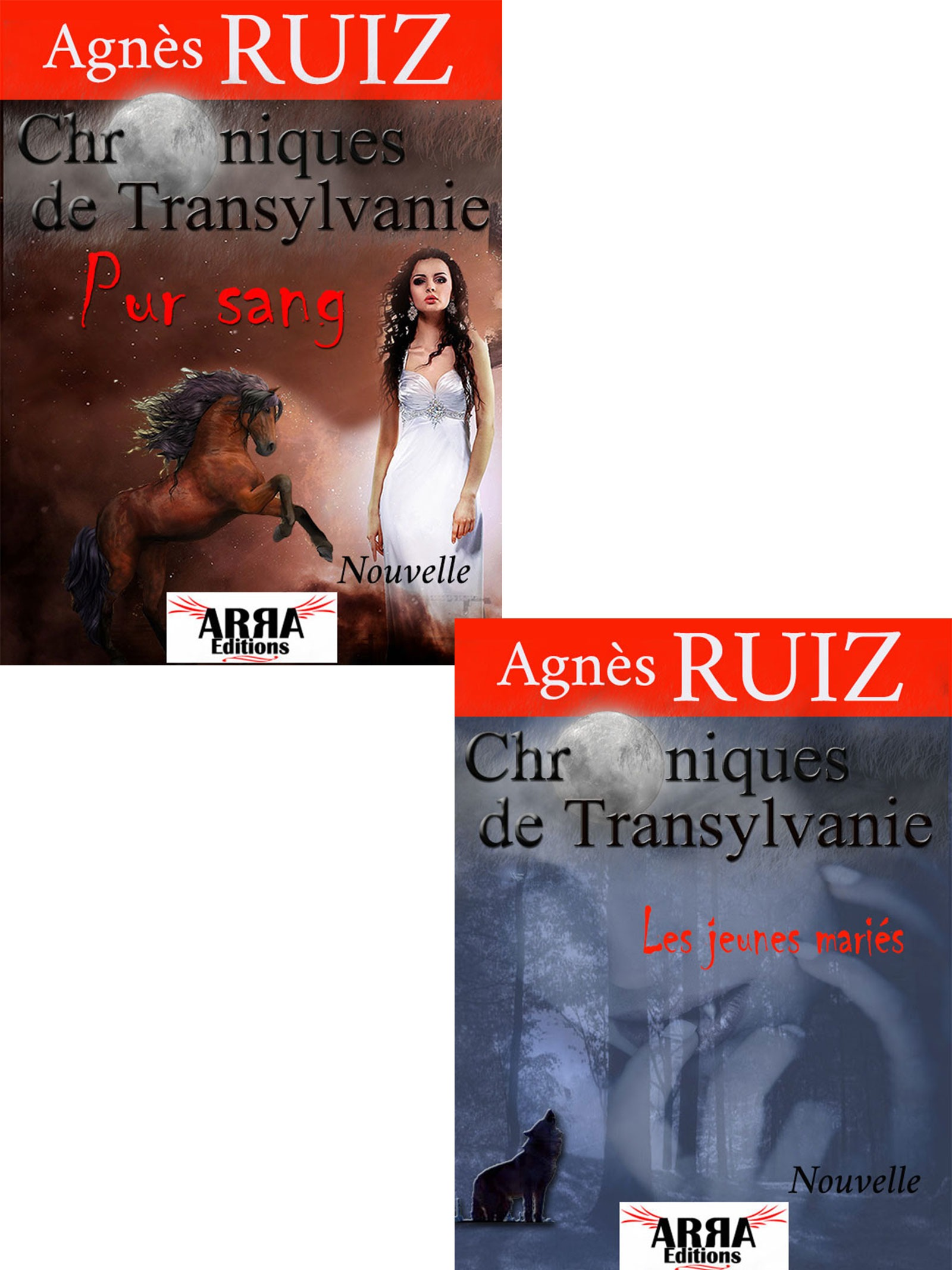 Chroniques de Transylvanie