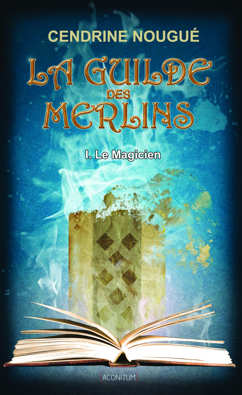 Le Magicien, LA GUILDE DES MERLINS, T1