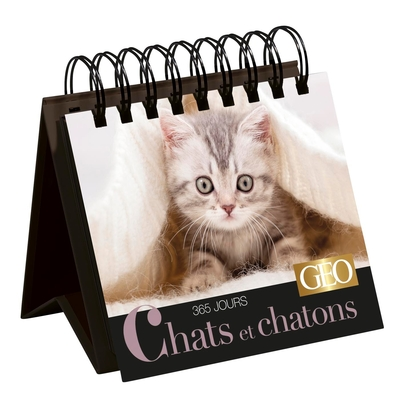365 JOURS CHATS ET CHATONS  - CALENDRIER GEO