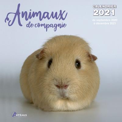 CALENDRIER ANIMAUX DE COMPAGNIE 2021