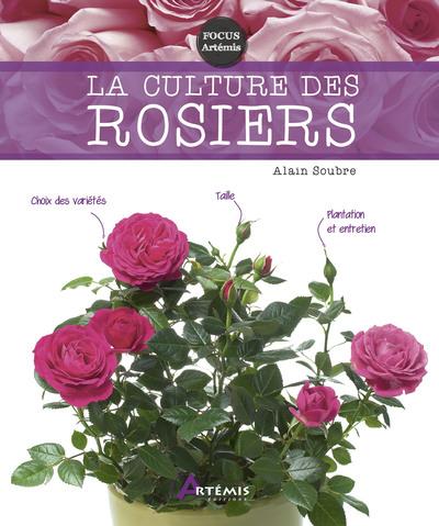 CULTURE DES ROSIERS