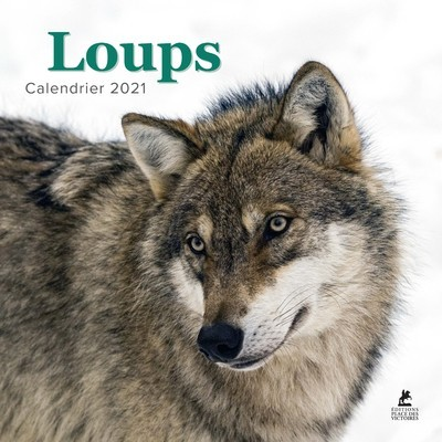 LOUPS - CALENDRIER 2021
