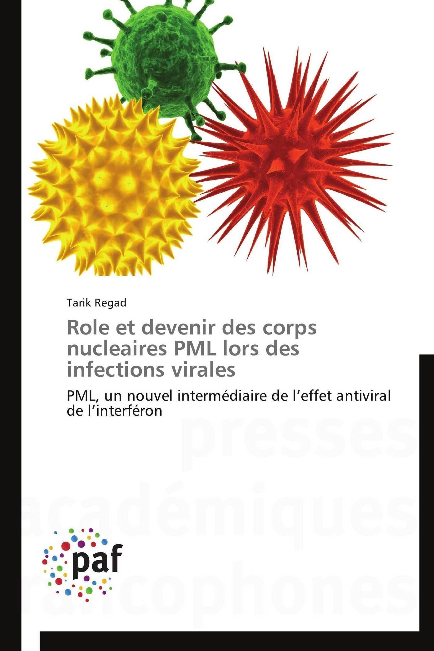 ROLE ET DEVENIR DES CORPS NUCLEAIRES PML LORS DES INFECTIONS VIRALES