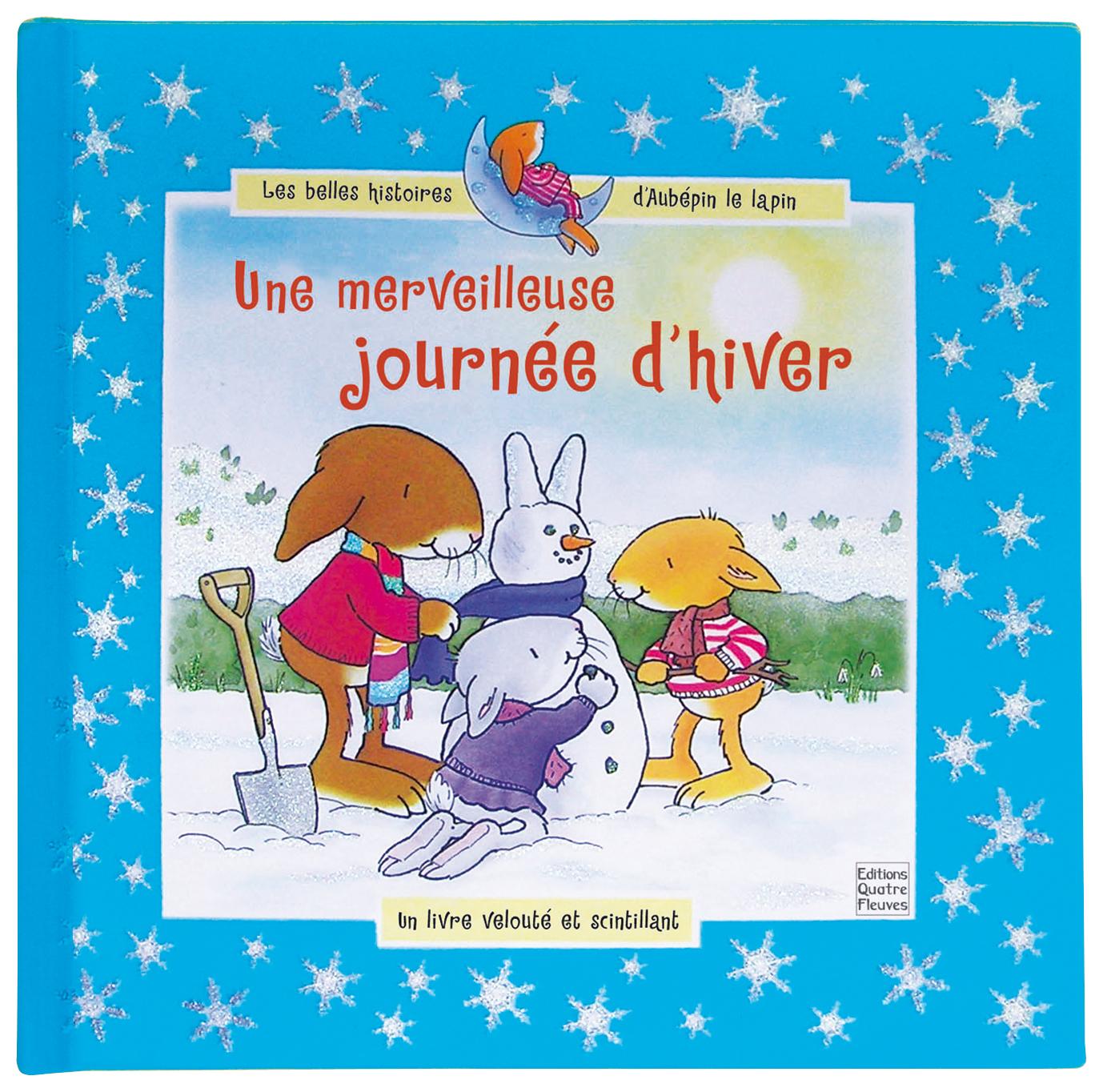 MERVEILLEUSE JOURNEE D'HIVER