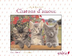 CALENDRIER PERPETUEL CHATONS D'AMOUR