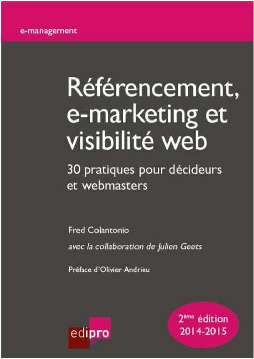 REFERENCEMENT, E-MARKETING ET VISIBILITE WEB : 30 PRATIQUES POUR DECIDEURS ET WE