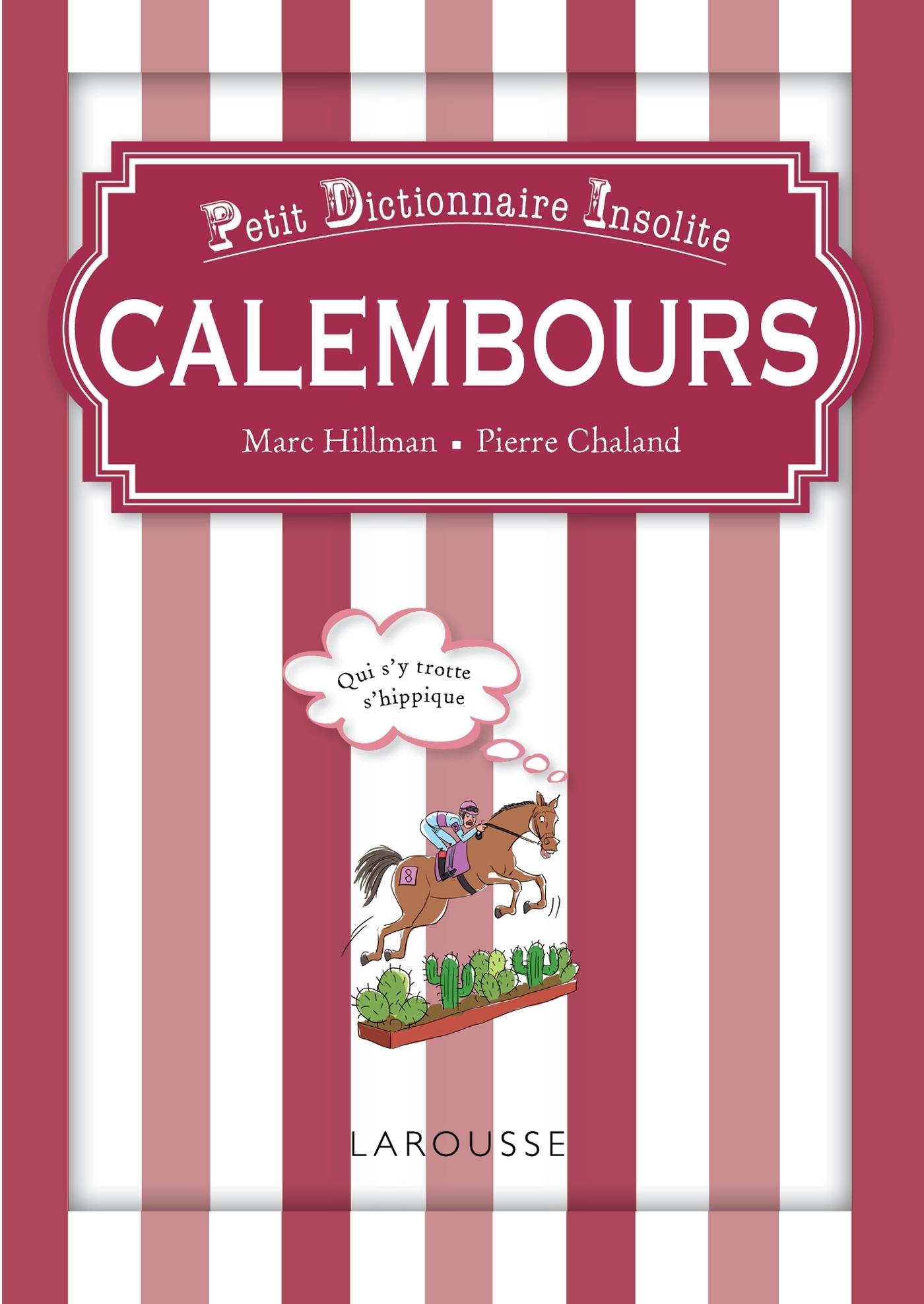 CALEMBOURS PETIT DICTIONNAIRE INSOLITE
