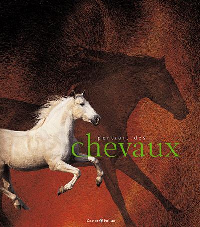 PORTRAIT DES CHEVAUX