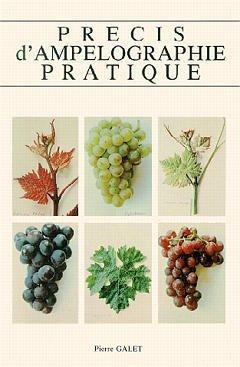 PRECIS D'AMPELOGRAPHIE PRATIQUE (7. ED.)